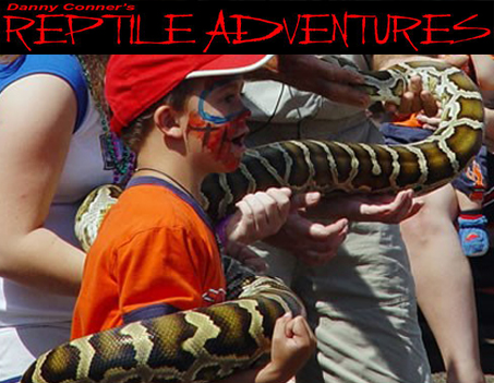 reptile attraction featured1